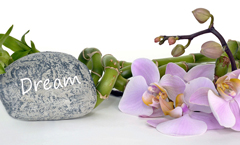 beauty-health-wellness-marketing-wort-mit-wirkung-neukundengewinnung-kundenbindung-orchidee-entspannung